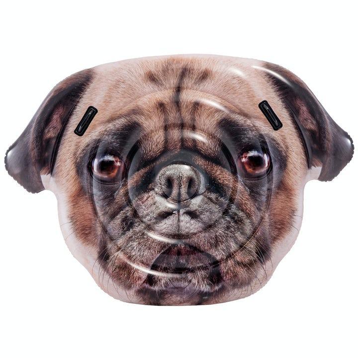 Intex Hund Luftmadrass
