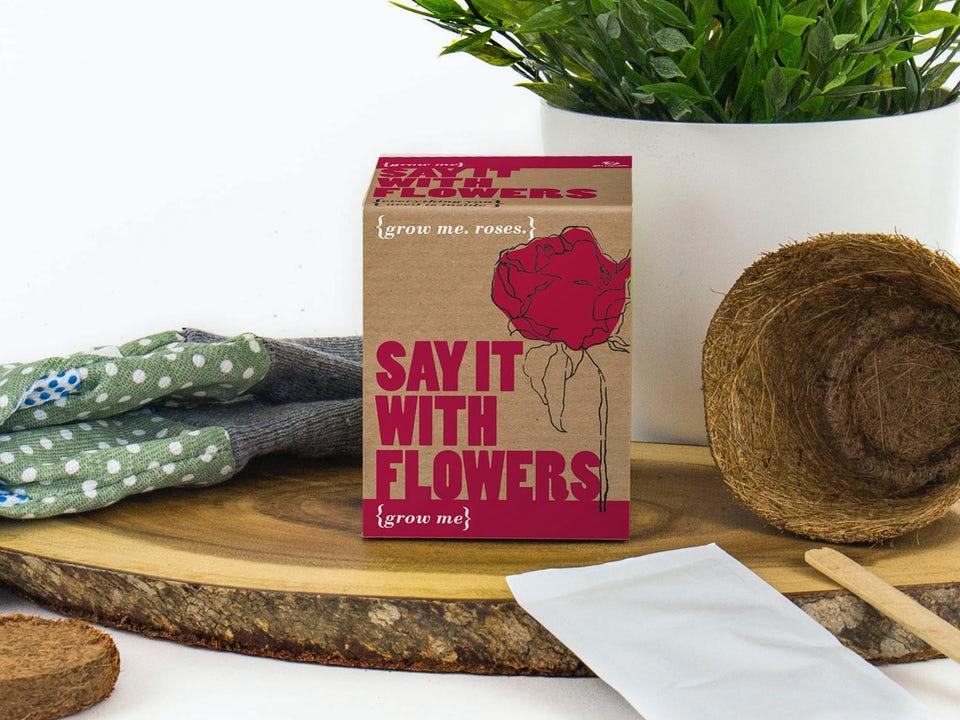 Say It With Flowers - Odla Din Egen Ros