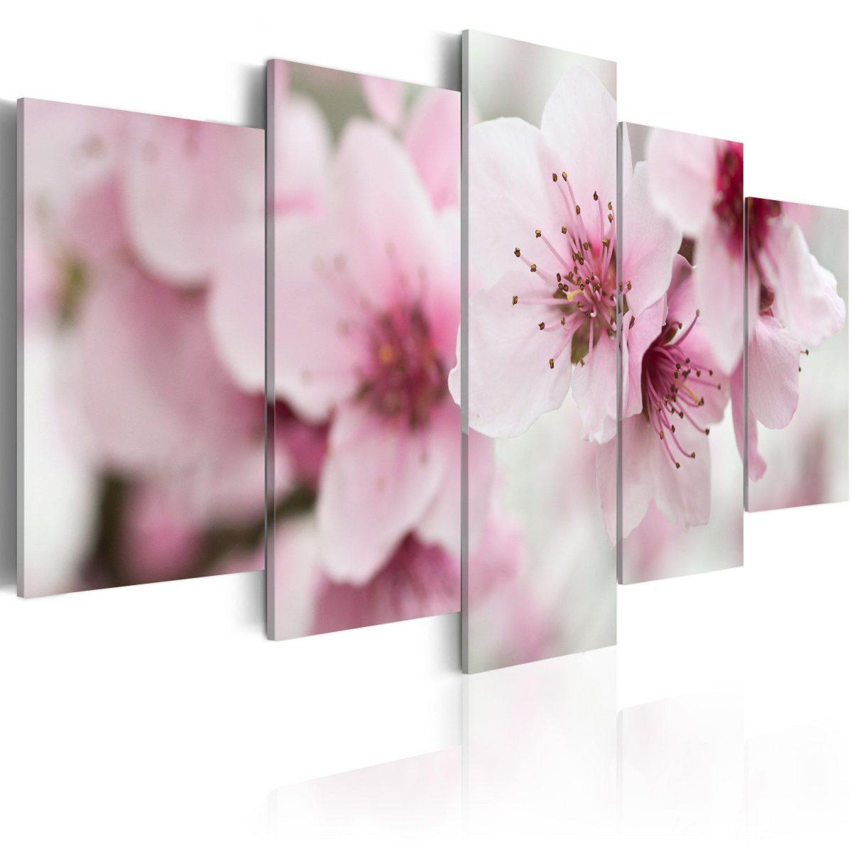 Canvas Tavla - Cherry- gentleness and beauty - 100x50