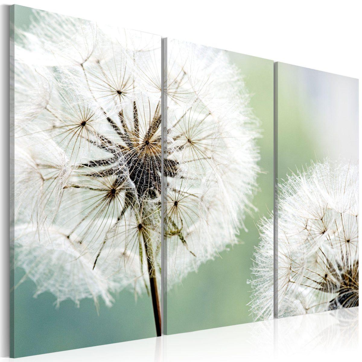 Canvas Tavla - Fluffy dandelions - 60x40