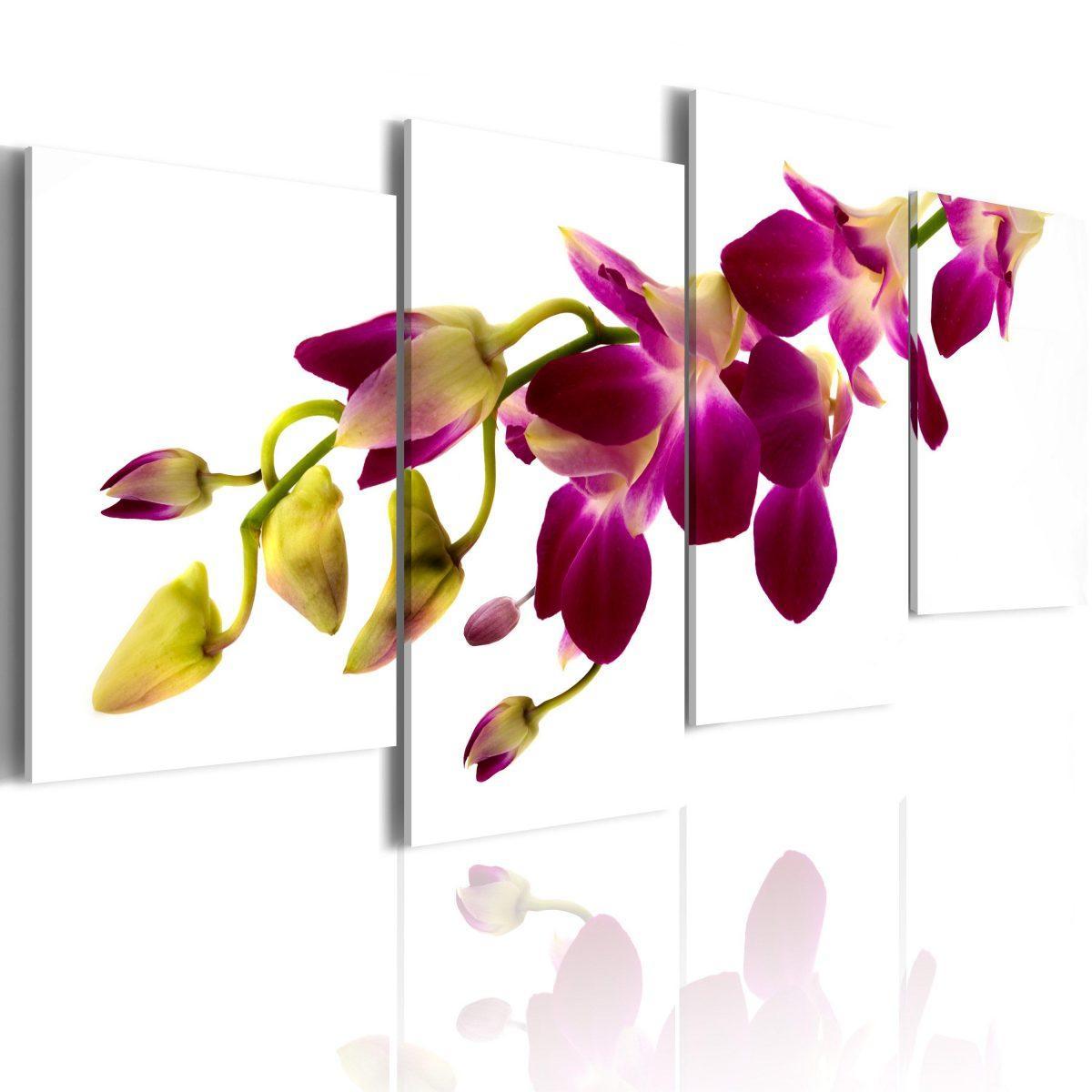 Canvas Tavla - Orchids glöd - 80x45