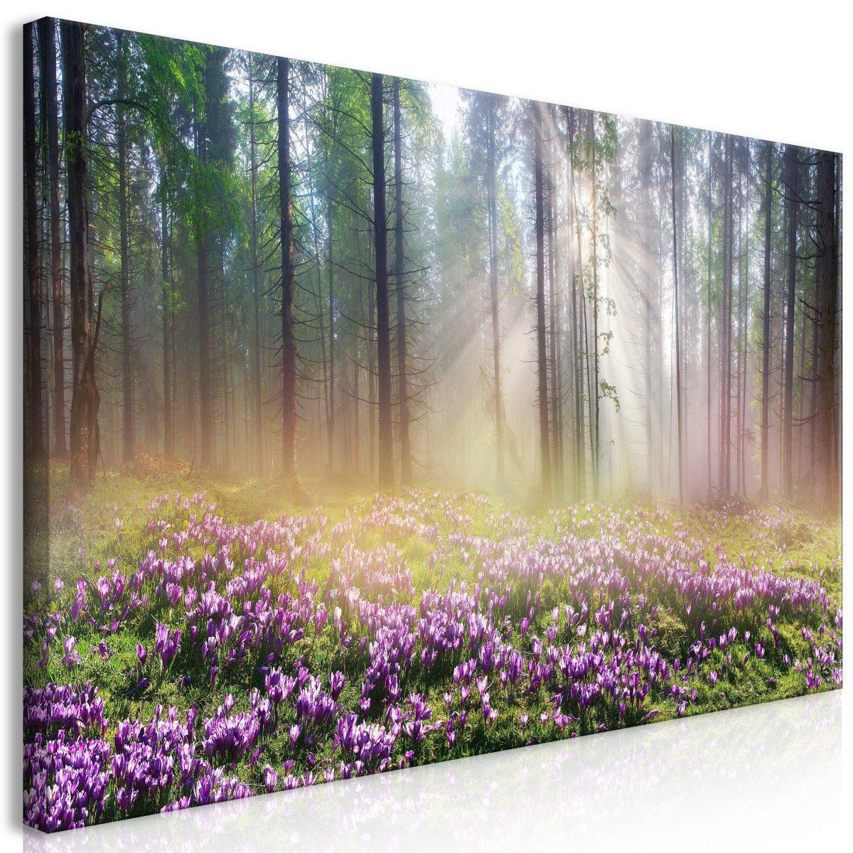 Canvas Tavla - Purple Meadow