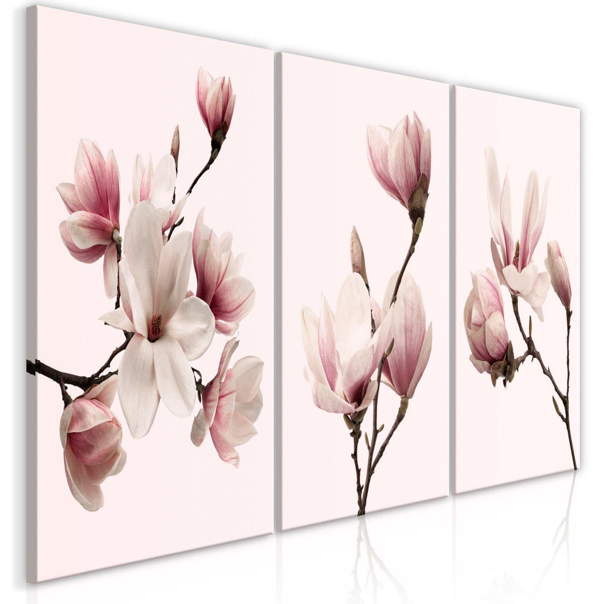 Canvas Tavla - Spring Magnolias