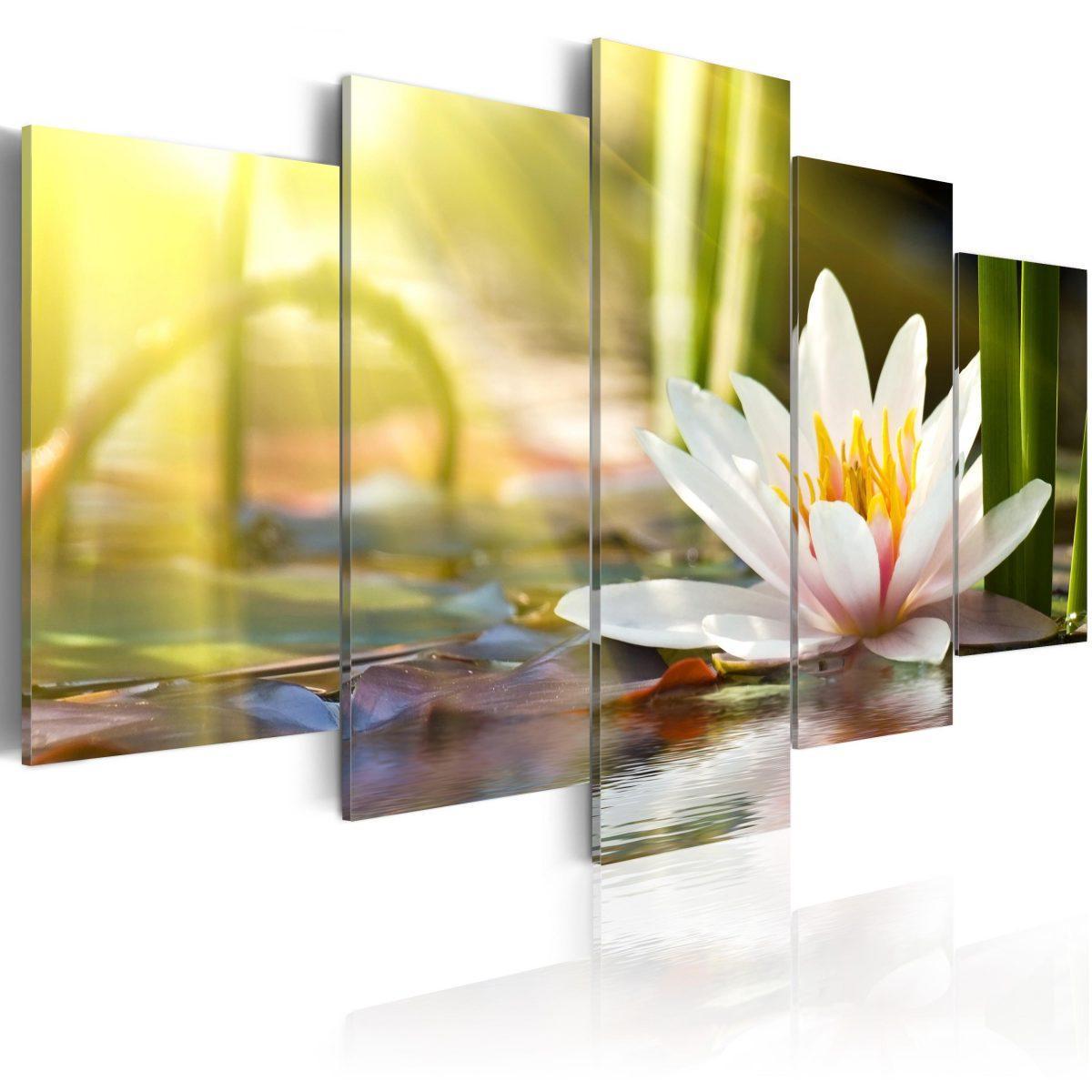 Canvas Tavla - Sunny Lotus - 100x50