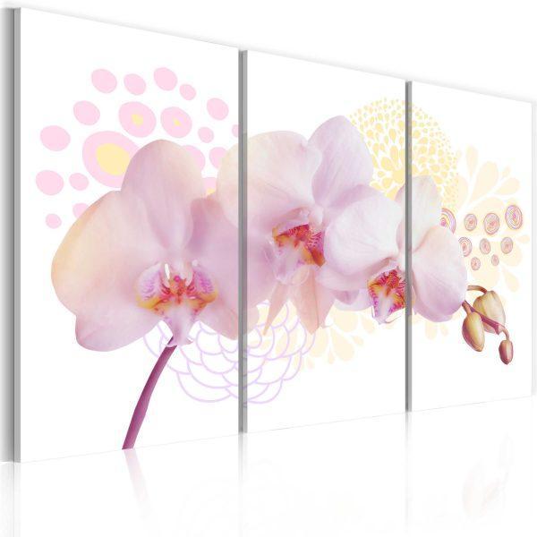 Canvas Tavla - White Lady - 60x40