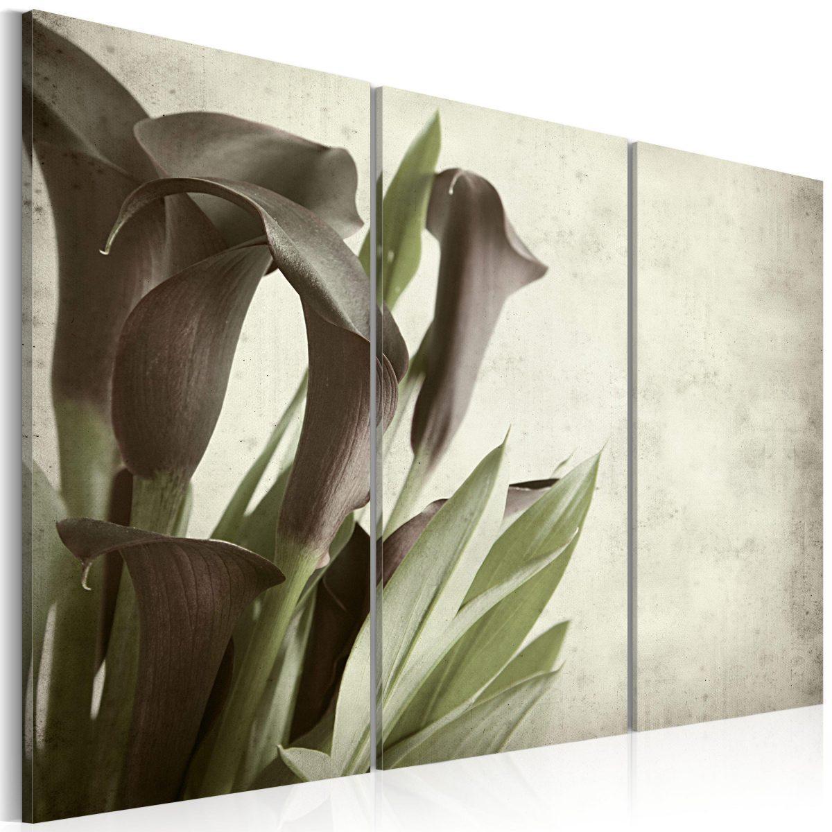 Canvas Tavla - callas - vintage - 60x40