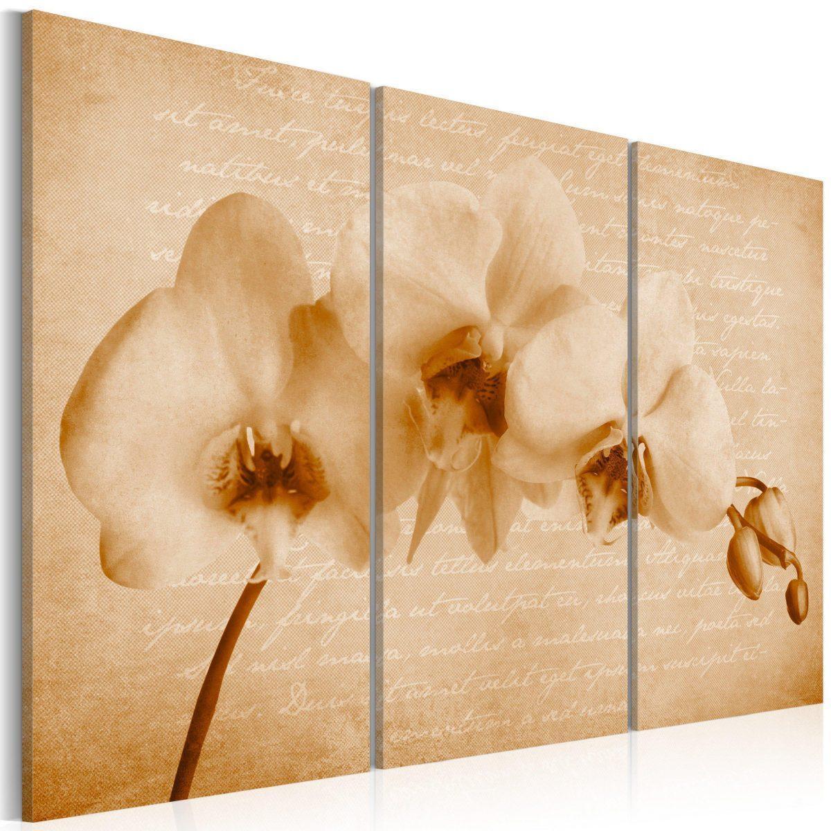 Canvas Tavla - orkidé