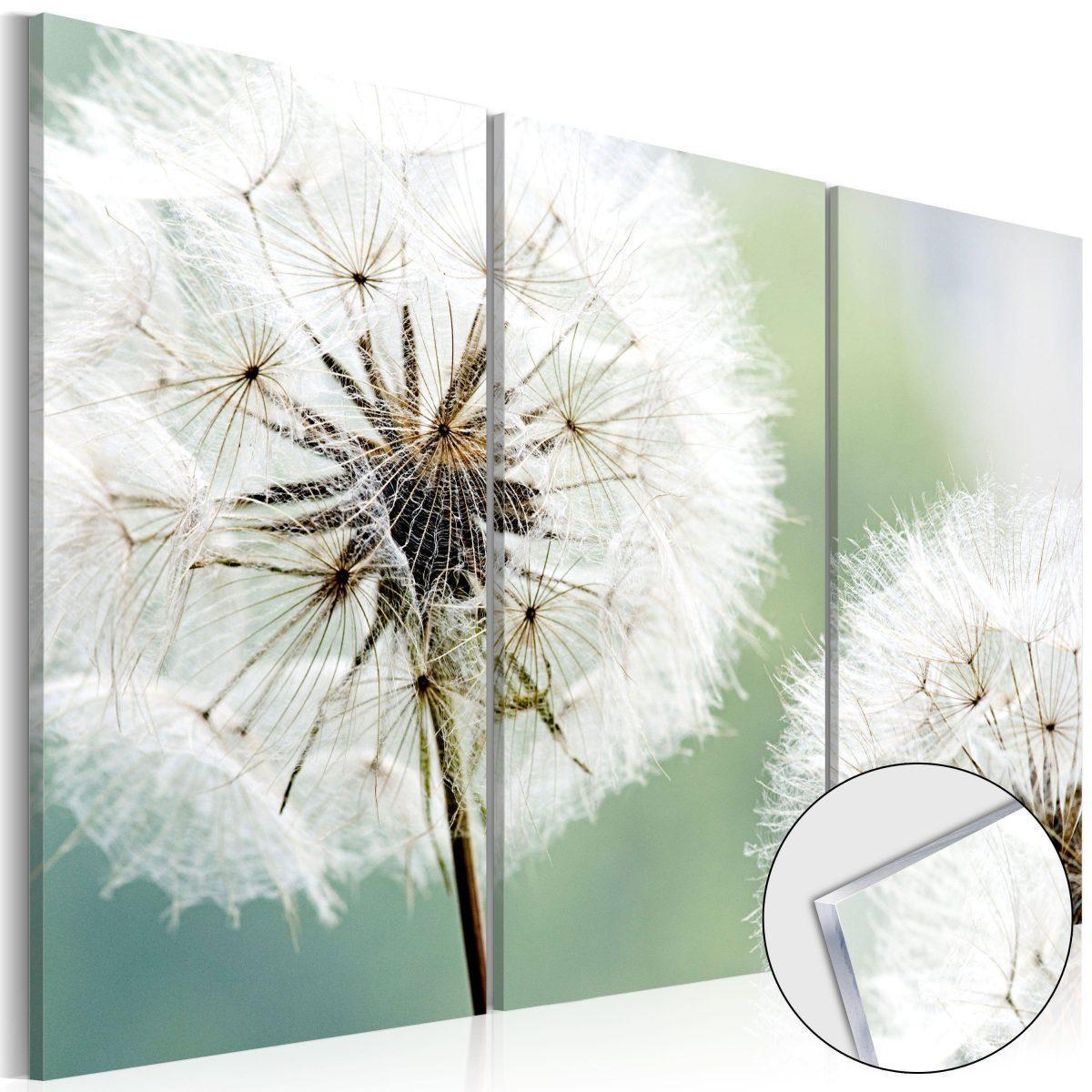 Tavla i akrylglas - Fluffy Dandelions - 60x40