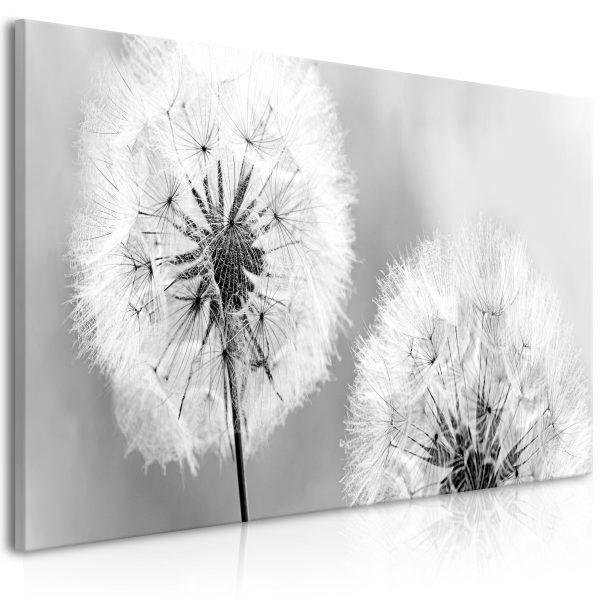 Canvas Tavla - Fluffy Dandelions
