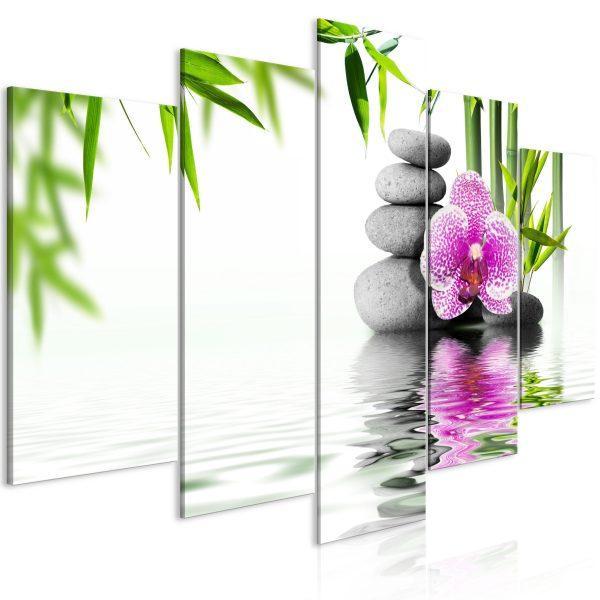 Tavla - Water Garden
