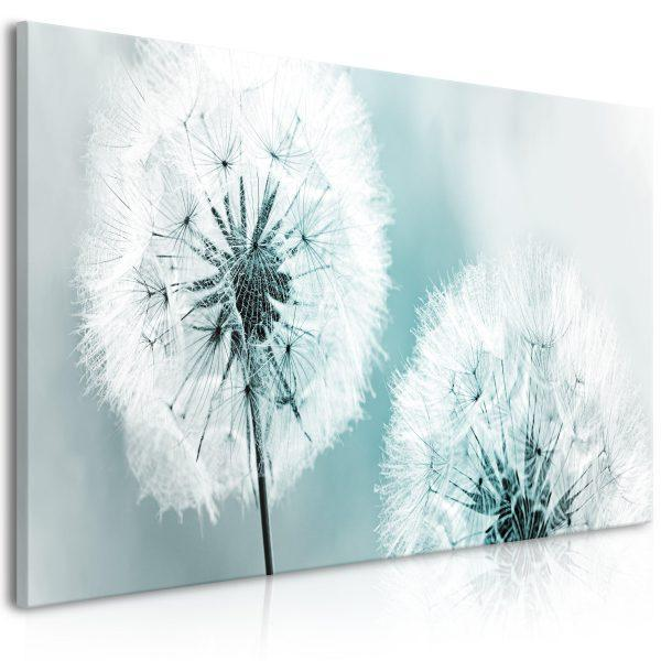 Canvas Tavla - Fluffy Dandelions