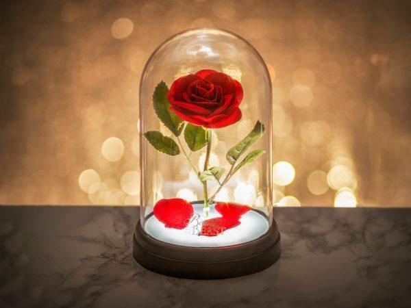 Skönheten och Odjuret Lampa