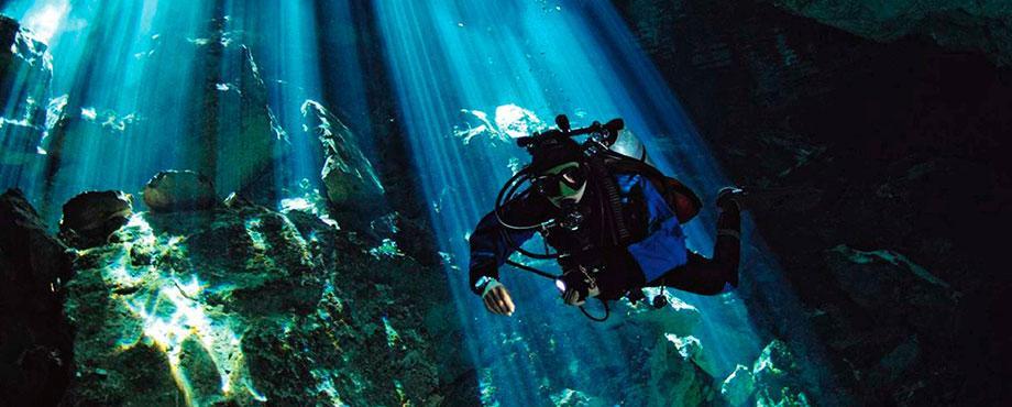 Grundkurs dykning - online