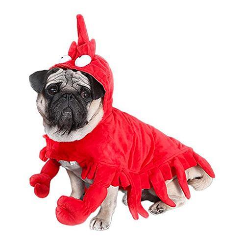 Hummer Maskeraddräkt för Hund - One size