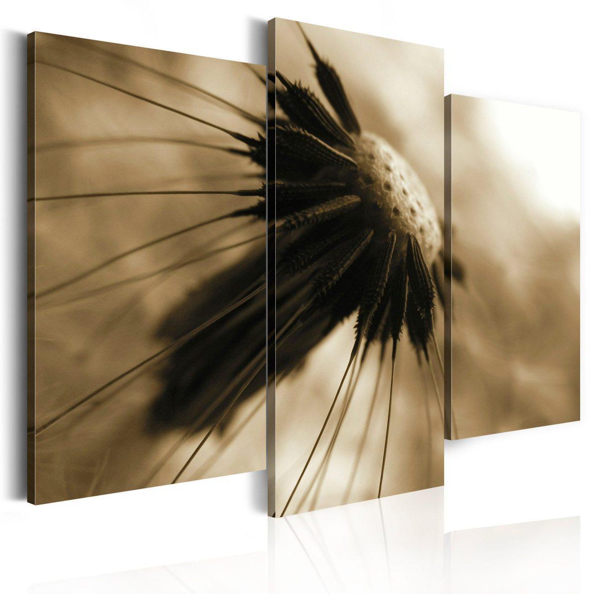 Canvas Tavla - A dandelion in sepia - 60x50