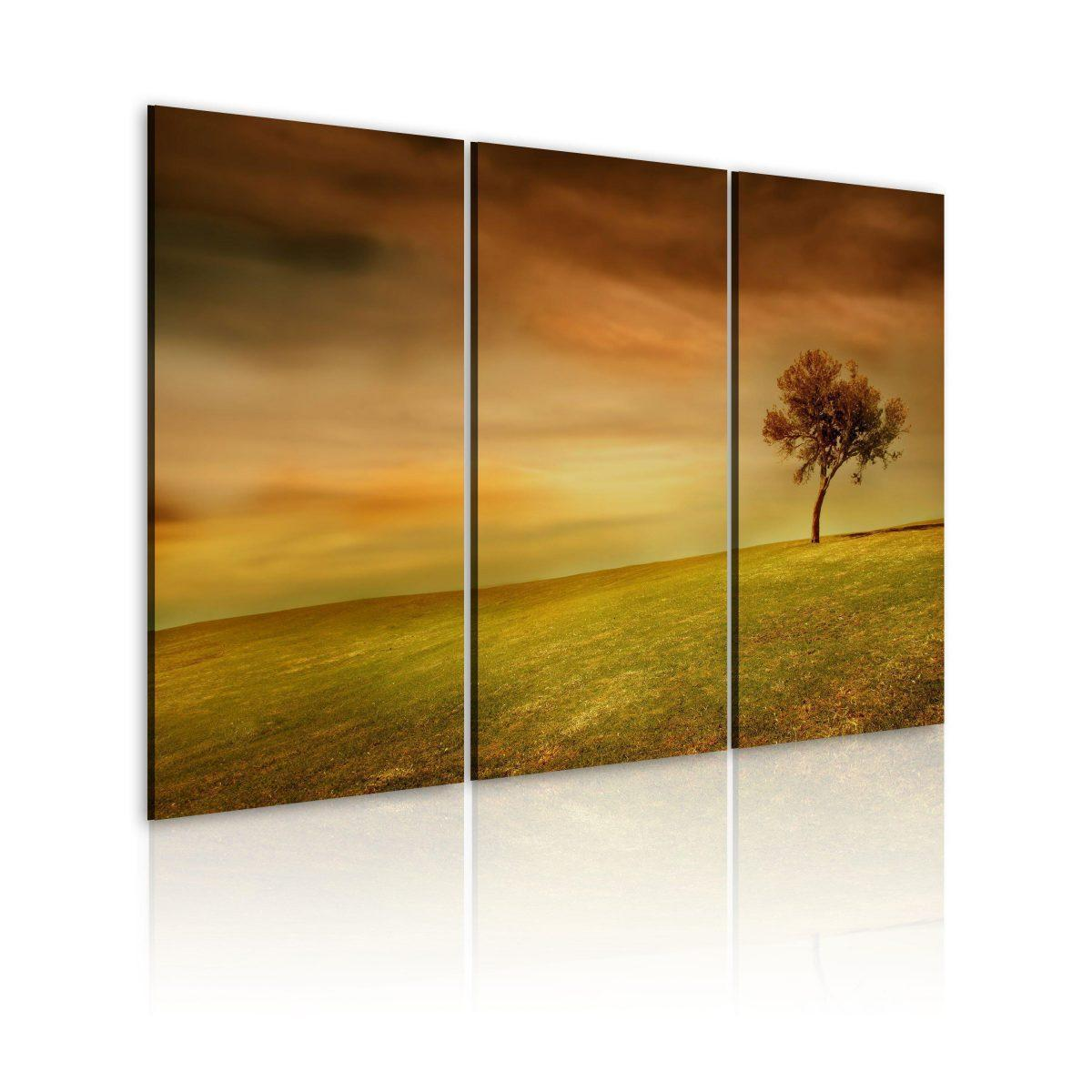 Canvas Tavla - A lonely tree on a meadow - 60x40