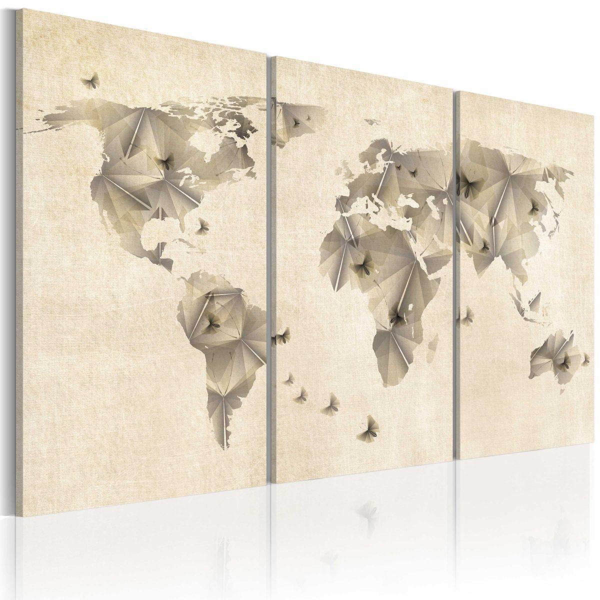 Canvas Tavla - Atlas of fjärilar - triptych - 60x40