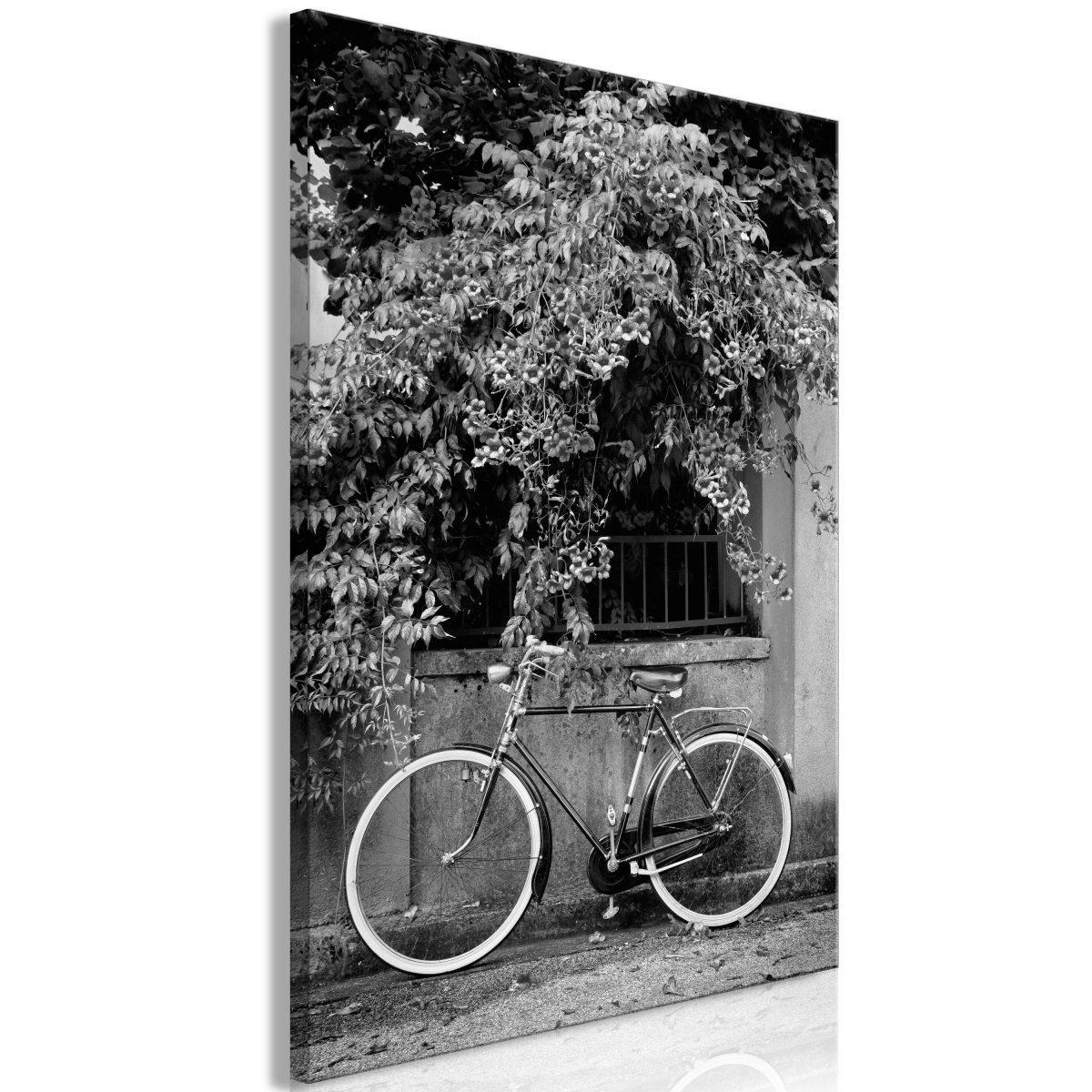 Canvas Tavla - Bicycle and Flowers