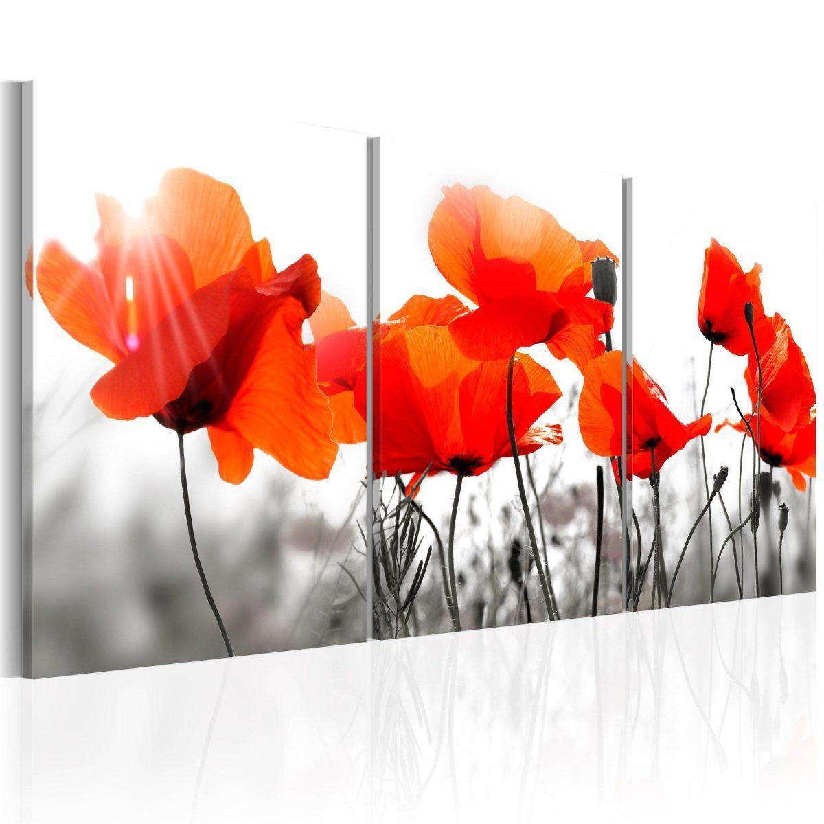 Canvas Tavla - Charming Poppies - 60x30