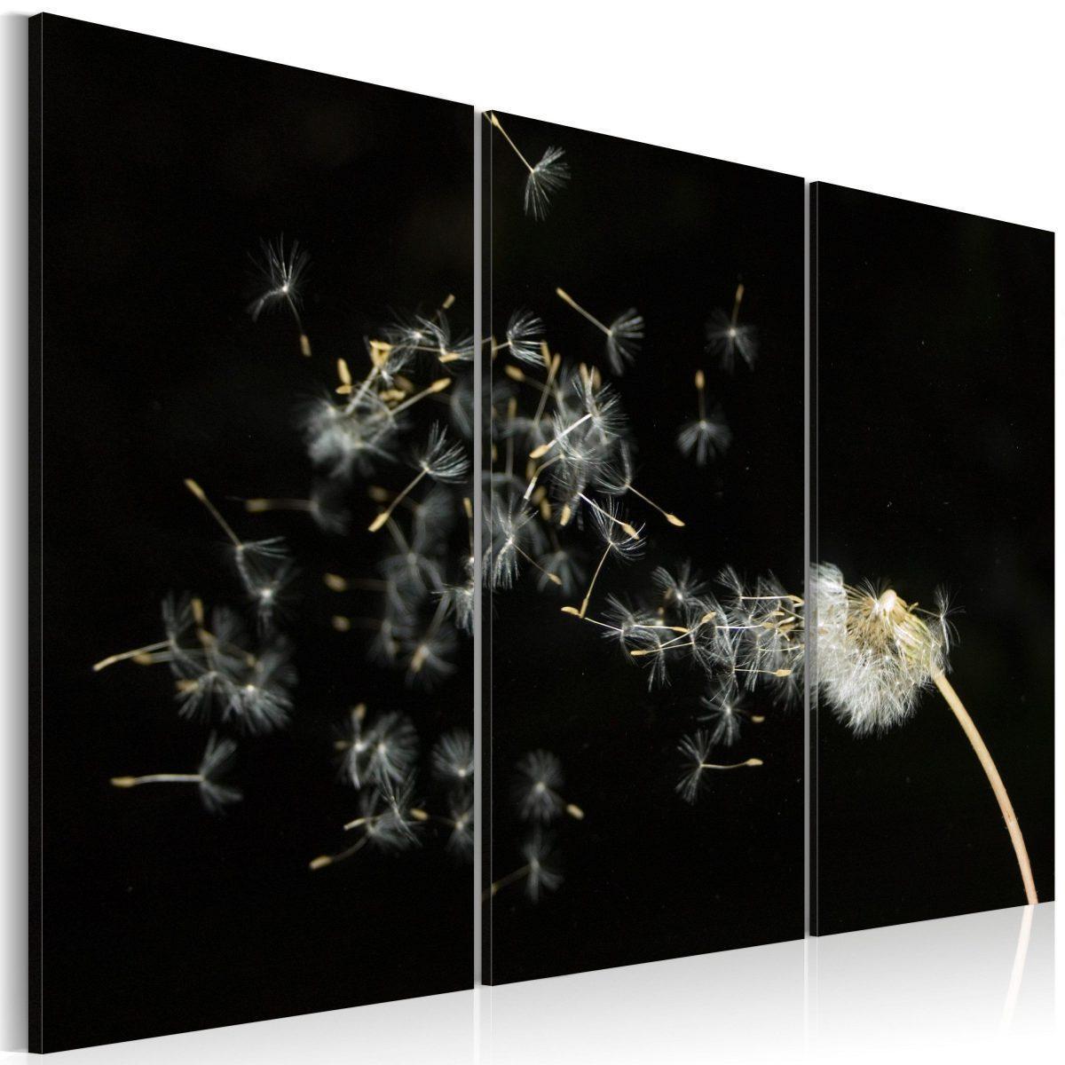 Canvas Tavla - Dandelions- the transience - 120x80