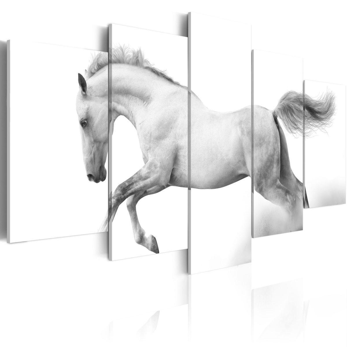 Canvas Tavla - Horse- passion and freedom - 200x100