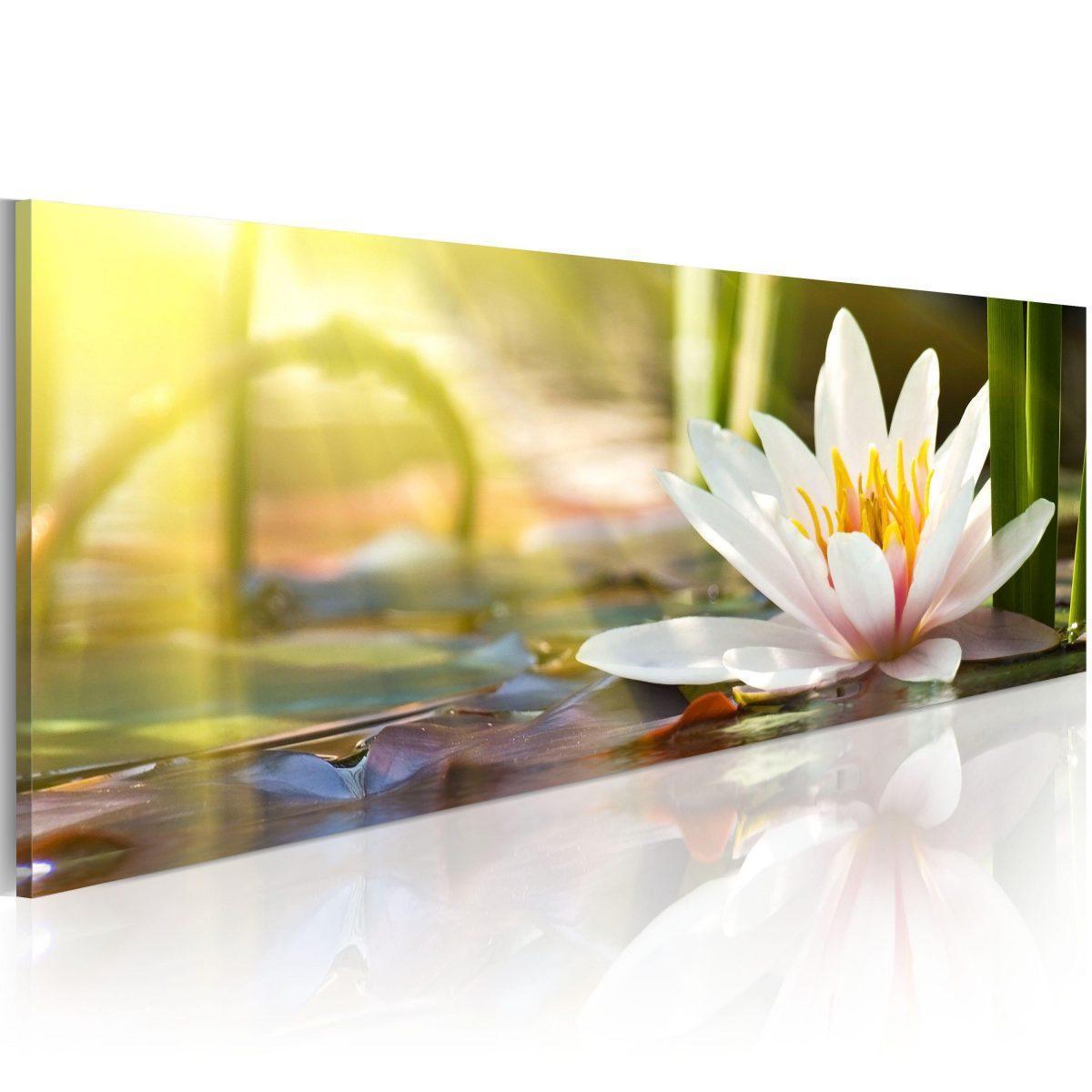 Canvas Tavla - Lotus' Glow - 150x50