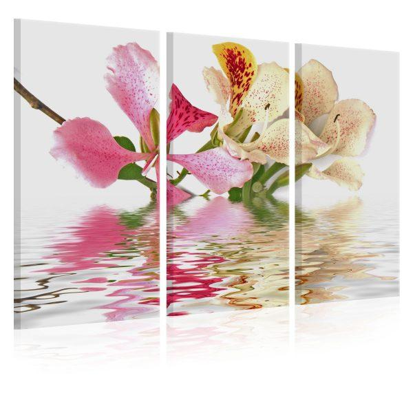 Canvas Tavla - Orchid with colorful spots - 90x60