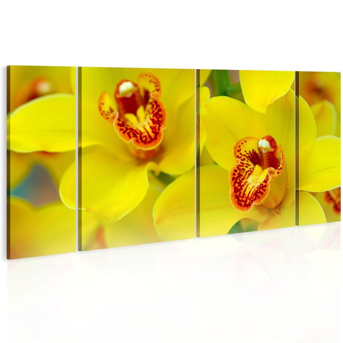 Canvas Tavla - Orchids - intensity of yellow color - 120x60