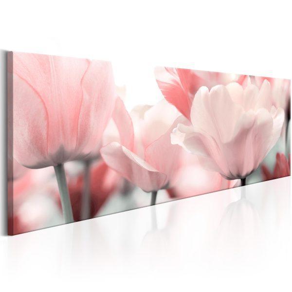 Canvas Tavla - Pink Tulips - 120x40