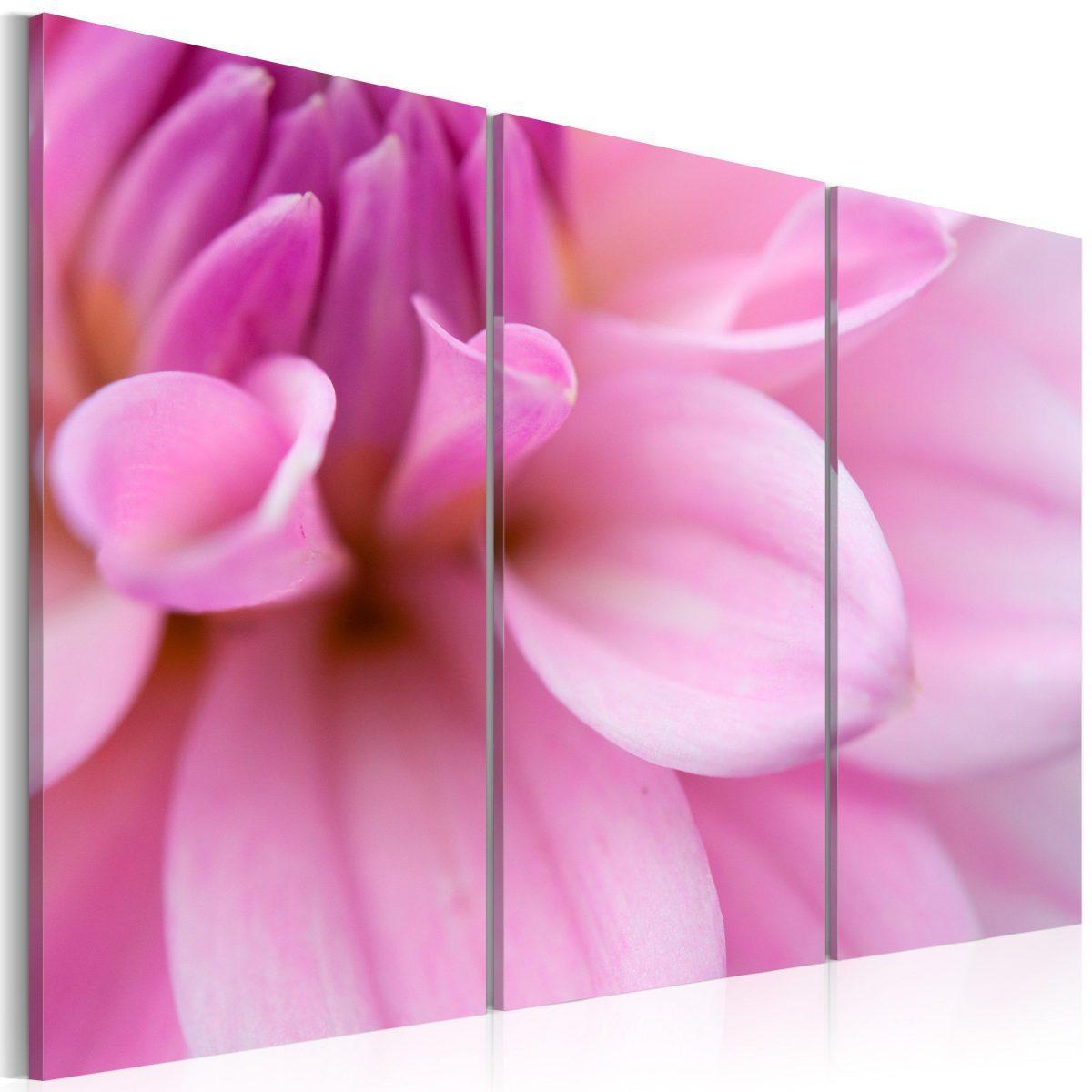 Canvas Tavla - Pink dahlia - 120x80