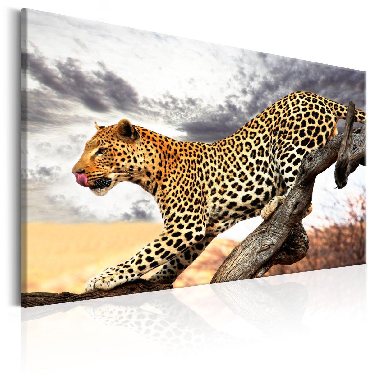 Canvas Tavla - Predatory Stare - 120x80