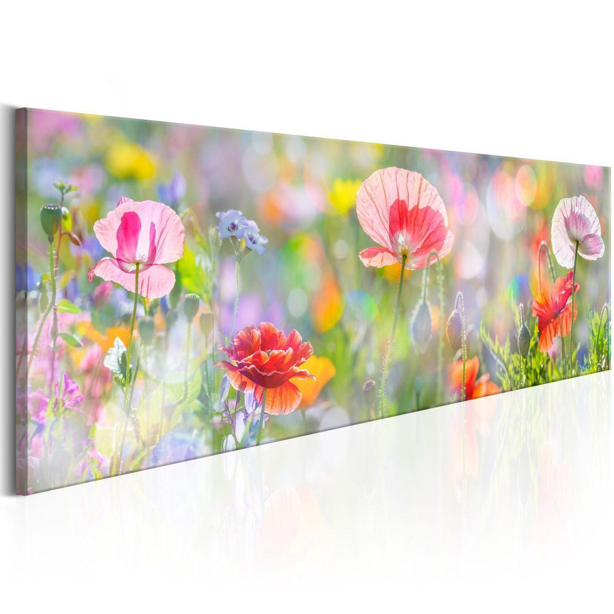 Canvas Tavla - Rainbow of Morning Poppies - 120x40