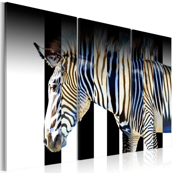 Canvas Tavla - Stripes - 60x40