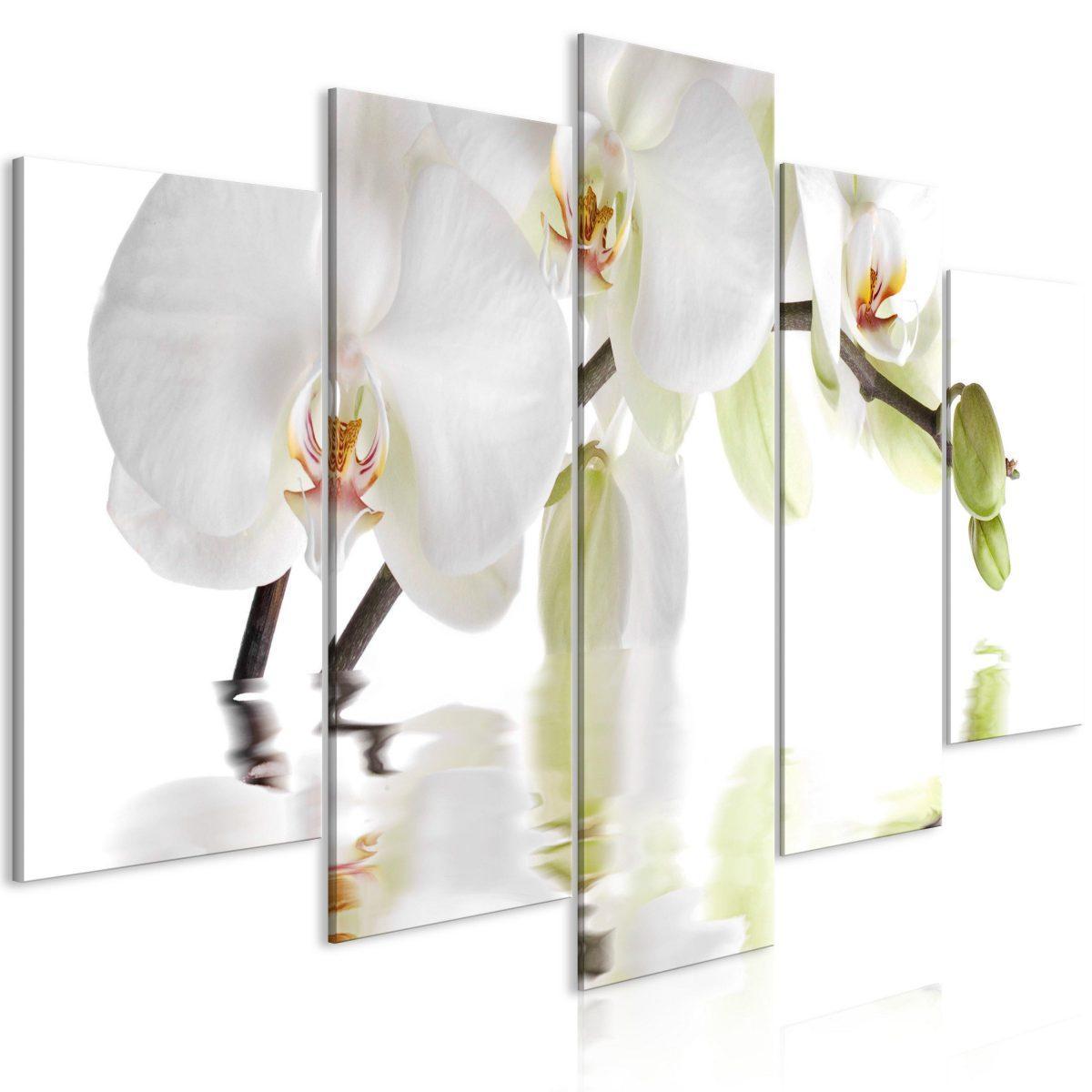 Canvas Tavla - Wonderful Orchid